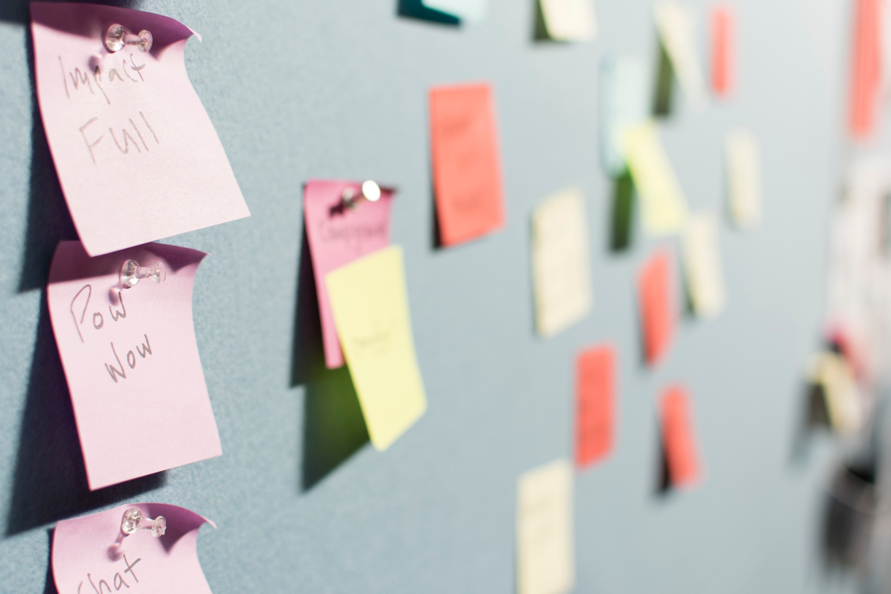 sticky notes full of ideas
