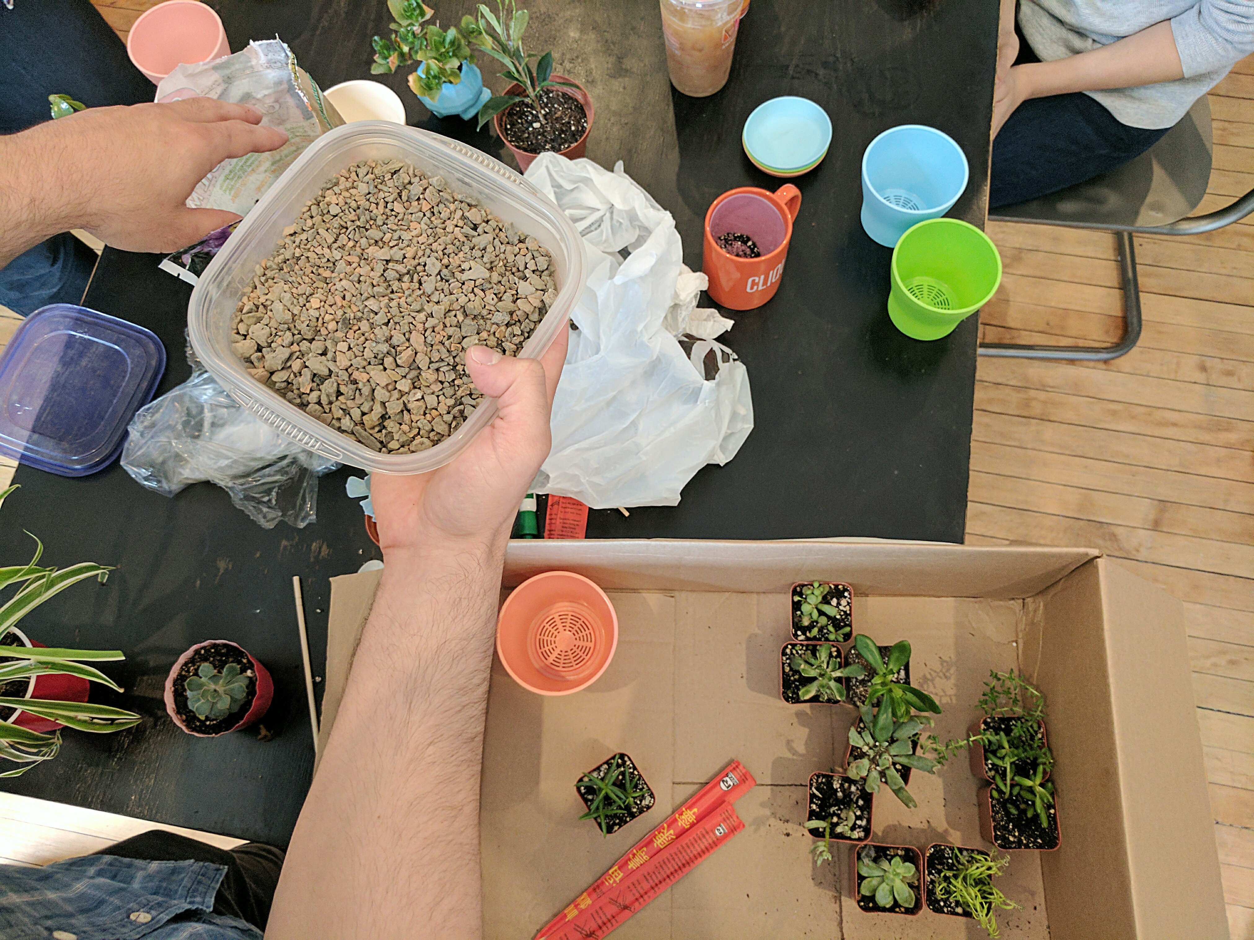 Planting session