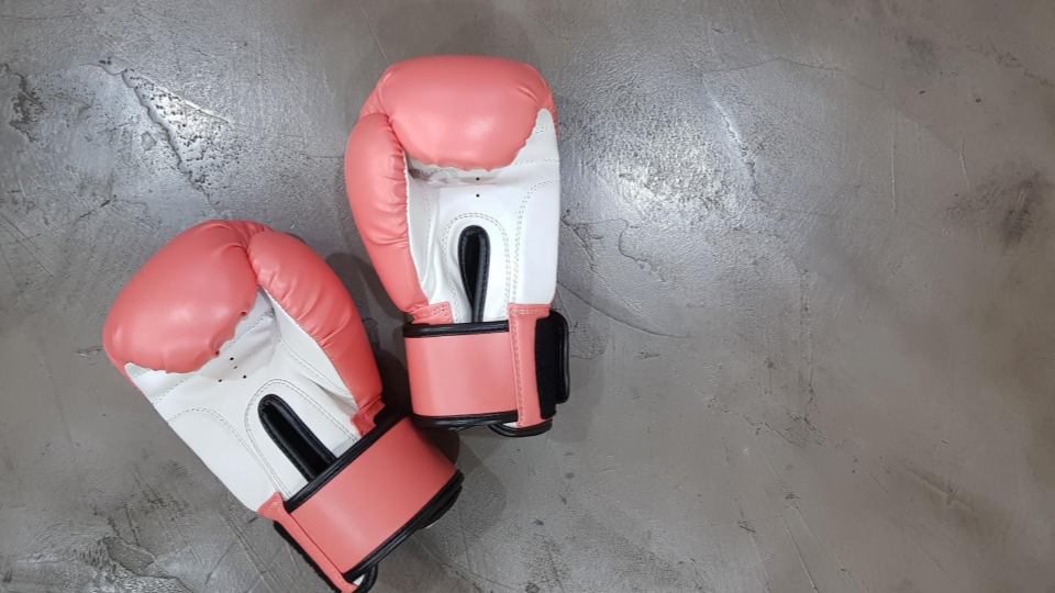 pair of boxing gloves