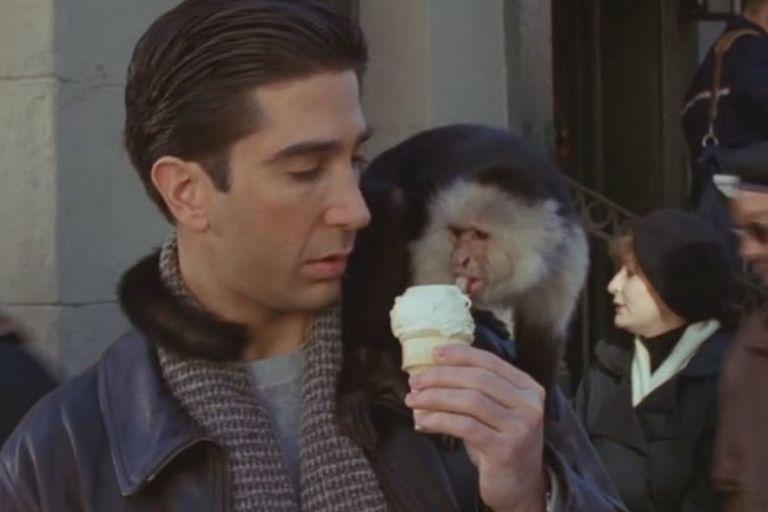 Marcel on Ross' shoulder eating icecream