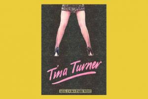 Tina Turner Concert Poster