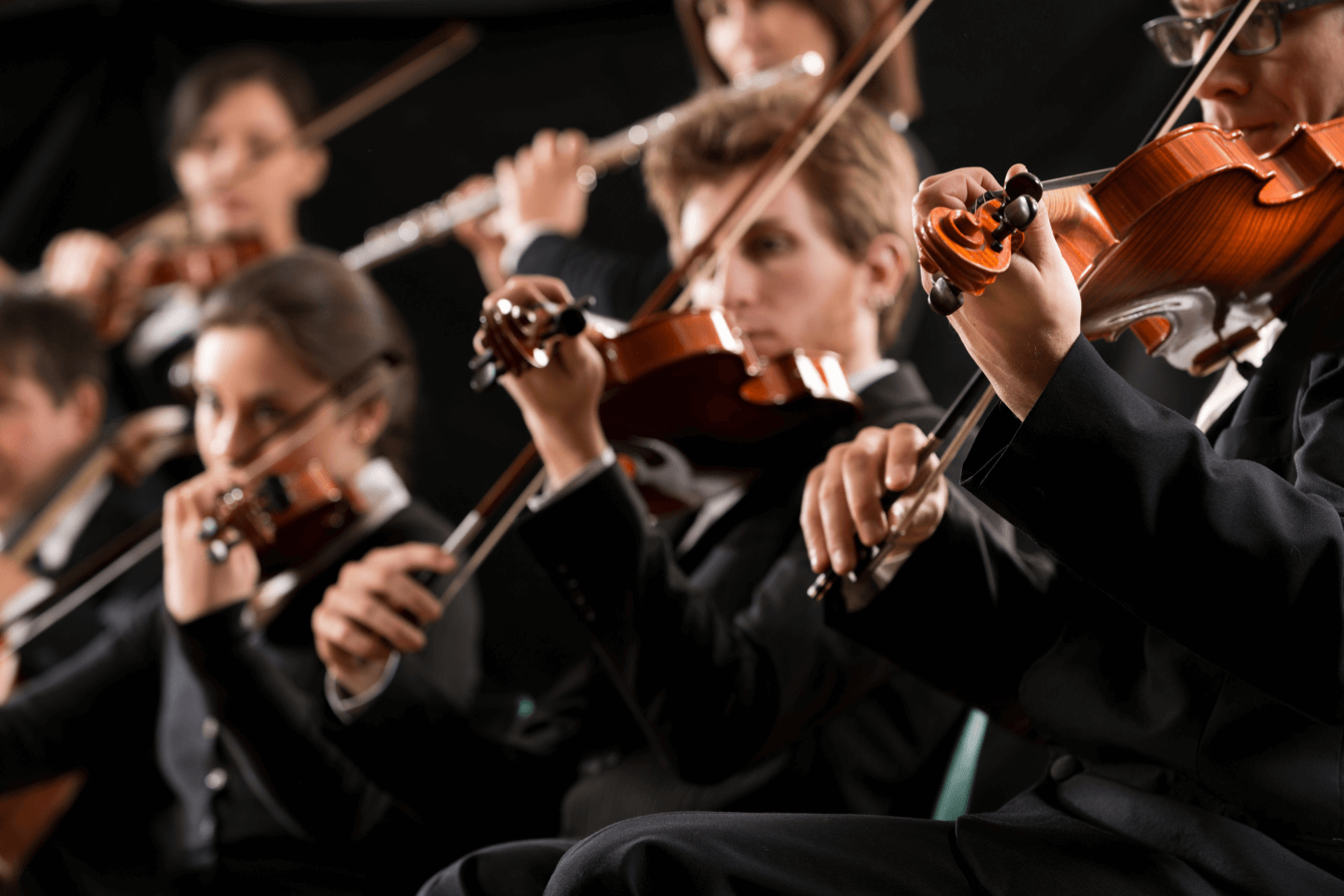 Group of violinists playing