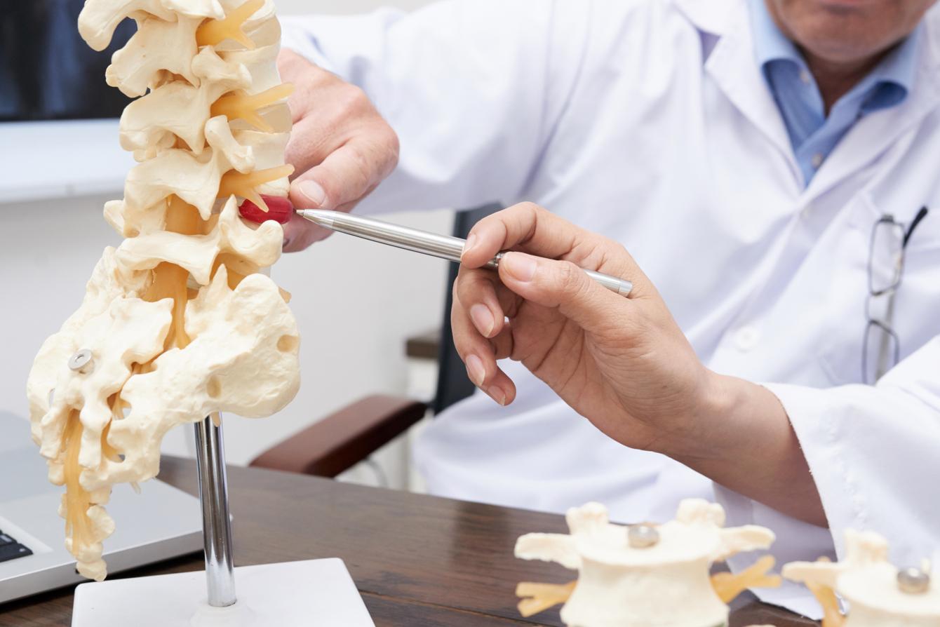 Doctors looking at model of a vertebrae