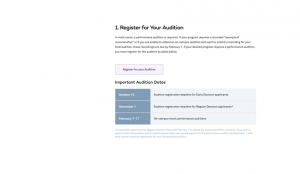 A screenshot of the audition registration page