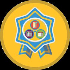 Interconnected platforms badge